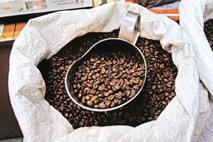 Coffee chasers: Mysore Concerns in Mumbai sells a dark roast blend without chicory. Abhijit Bhatlekar / Mint