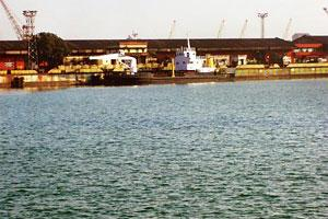 Adding capacity: A view of Paradip port. Essar Shipping was the highest bidder at a public auction for the port's coal handling terminal.