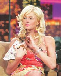Pet theory: Paris and her chihuahua. Getty Images