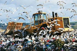 Climate concerns: A bulldozer flattens garbage at a landfill near Rome. Emails between scientists, including from Phil Jones, debating climate change that were stolen and posted on the Internet have