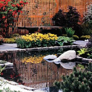 Meditative spaces: Reflections make water features an interesting element in landscaping. Anusha Babbar, courtesy Better Interiors