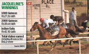 Great expectations: Jacqueline (No. 591) at the Mahalaxmi racecourse in Mumbai. The filly, which is the favourite for the Rs1.25 crore Indian Derby race on Sunday, has never run the full 1.5 miles (de