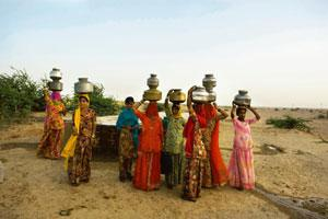 Water woes: These Rajasthani women travel 5km from their village to fetch drinking water. The government blames declining groundwater tables and contamination of sources for insufficient supply. Harik