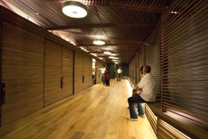 Dark and deep: The Woodwalk studio in New Delhi  Andre Fanthome/Vir Mueller Architects