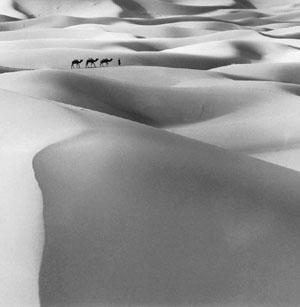 Expanse: Merzouga Dunes, a work on display at the show