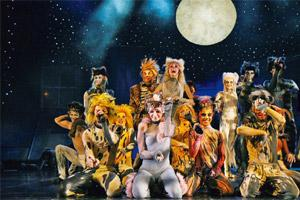 Feline charm: Cats, the musical, ran for 18 years on Broadway. Effie/Wikimedia Commons