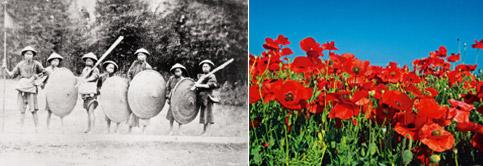 Early empire: The Opium Wars form the backdrop to Ghosh's narrative (Hulton Archive/Getty Images); and (left) poppy flowers in bloom (Thinkstock) .