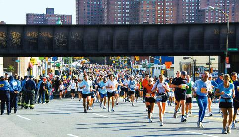 It's evolutionary: The answer to the growing popularity of marathons could lie in evolutionary biology. Photo by Kerstin Winterkamp/Wikimedia Commons.