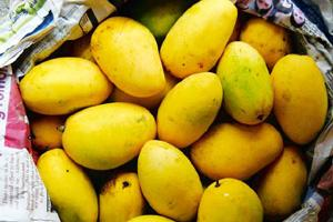 Healthy: Mangoes are packed with nutrition and are not fattening.