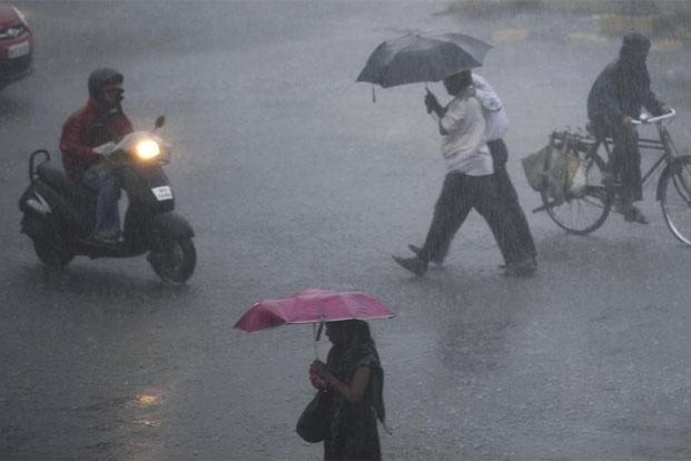 A late revival in monsoon rains has narrowed the shortfall.  Photo: Hindustan Times