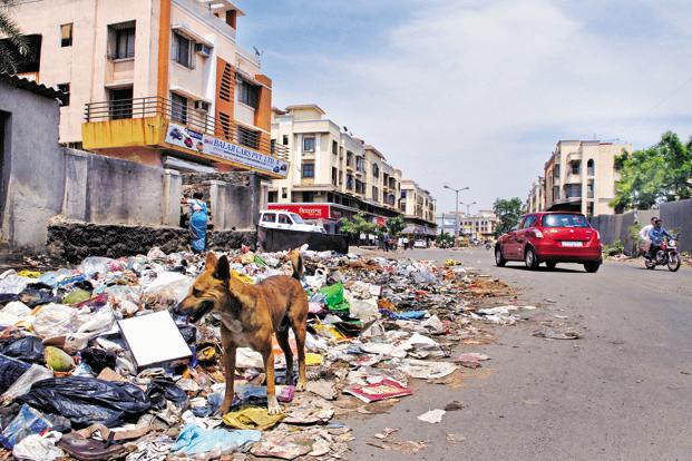 Garbage dumps and stray animals are a common a sight in Boisar, on the outskirts of Mumbai. Photo: Abhijit Bhatlekar/Mint