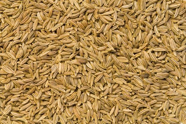 Cumin traders in Gujarat saw a similar boom in 2006 when the conflict between Israel and Lebanon resulted in the sea routes from Syria and Turkey to West Asia getting blocked. Photo: Thinkstock