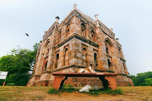 At home: A stray dog outside the Shish Gumbad in Lodhi Gardens. Photo: Pradeep Gaur/Mint
