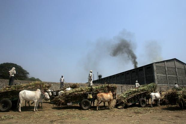 A file photo of Malegaon sugar co-operative in Baramati constituency, Maharashtra. Farmers said their demand for a substantial upfront payment stemmed from past behaviour of the co-operatives. Photo: HT
