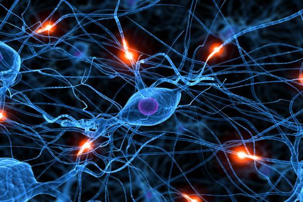 The biggest advances in neuroscience came in only the 1990s. As 2013 rolls in, prepare to change and be changed. Photo: iStockphoto