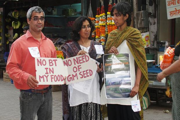 A file photo of anti-GM activists in Mumbai. The success of anti-GM activists in India is, however, not a testimony to their lobbying skills, rather it is a testimony to a huge state failure. Photo: HT (HT)
