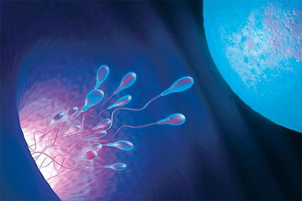 Egg freezing is not new in India, but it has become more effective in recent years.
