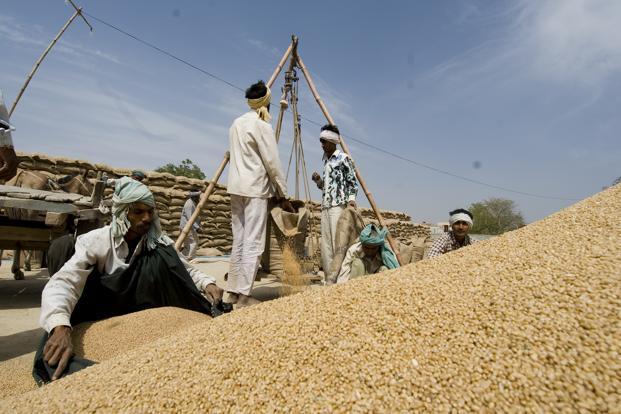 Govt said to estimate lower food-grain production