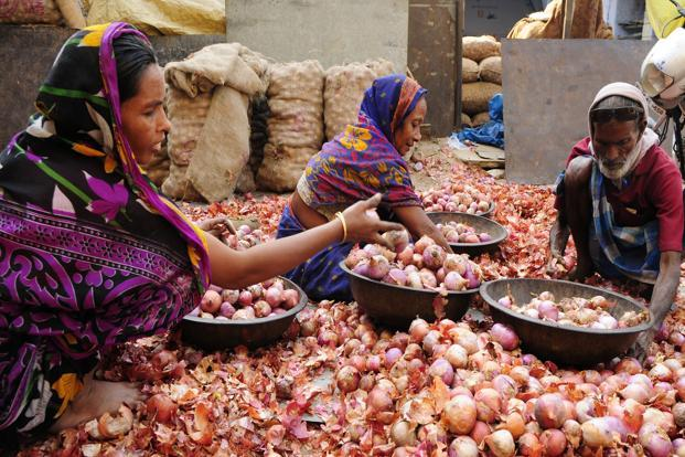 Onion is trading at around `1,650 to `1,700 a quintal in the benchmark Lasalgaon market in Nashik, up from around `1,200 in the first week of January. Photo: Ramesh Pathania/Mint