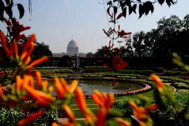 The gardens will be thrown open to the public from February 16 to March 17, after President Pranab Mukherjee inaugurates the Udyanotsav on 15 February.
