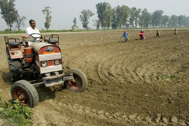 Farmer-owned firms, or 'producer companies,' allow small farmers to consolidate their buying and selling, and earn more by eliminating middlemen and shortening the value chain. Photo: Priyanka Parashar/Mint  (Priyanka Parashar/Mint )