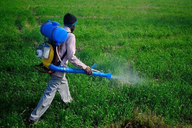Research paper on fertilizer
