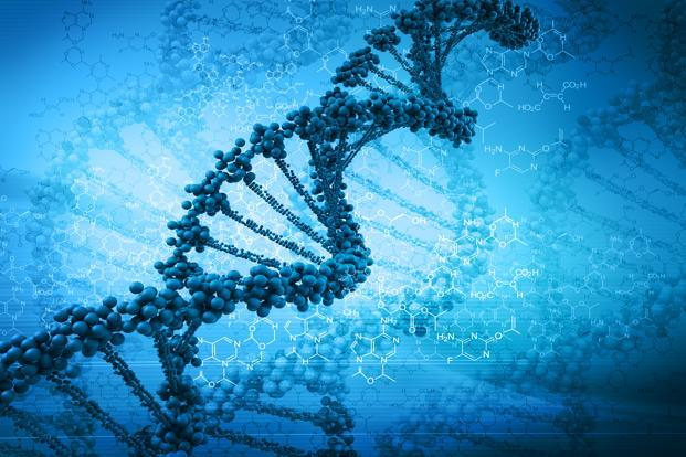 The future of medicine lies in designing complex biological molecules that will increasingly depend on factoring the effects of genes and other biological components. Photo: iStockphoto (iStockphoto)
