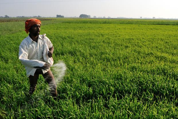 the fertilizer industry in india environmental sciences essay Indianjournalscom - gateway to access  (indian journal of comparative microbiology,  a review of the environmental management practices in the indian.
