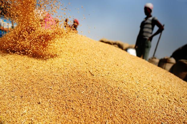 The food initiative is a key plank of the government's re-election strategy ahead of polls due by May 2014. Photo: Priyanka Parashar/Mint