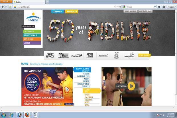 Consumer Products Segment Bails Out Pidilite
