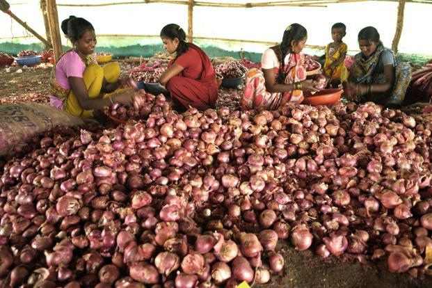 The latest WPI numbers released on Wednesday show that onion prices rose 144% in July over the year-ago period, after a similar increase in the previous month. Photo: Abhijit Bhatlekar/Mint