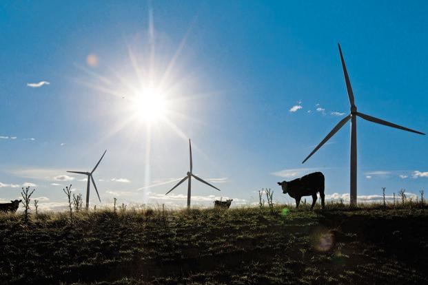 Oil India has already set up a 57.6 MW wind power capacity at an investment of `400 crore and plans to build a 5 MW solar power project in Rajasthan this year. Photo: Bloomberg