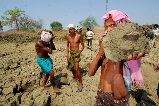 In 2004-2005, according to the NSS, in rural India, 34% of Scheduled Caste and 46% of Scheduled Tribe households were in self-employment (with corresponding urban proportions being 29% and 26%). Photo: Indranil Bhoumik/Mint   (Indranil Bhoumik/Mint)