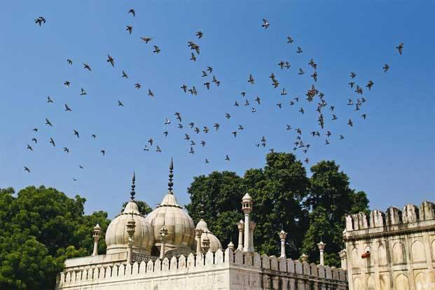 Krishna Sobti's novel, set in Delhi, has the effect of something akin to a painting made of a multitude of arresting scenes. Photo: Feng Li/Getty Images