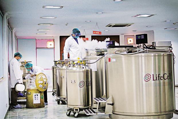 Banking On Stem Cells Livemint