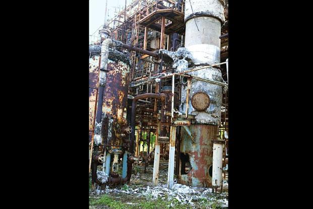 essay bhopal gas tragedy 1984