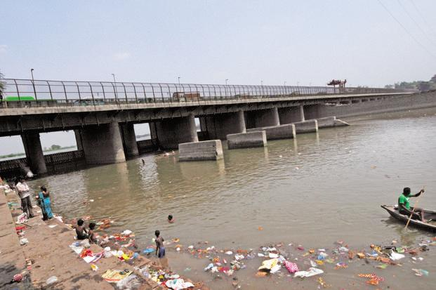 Image result for yamuna river