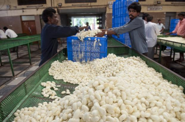 Image result for silk farming in india