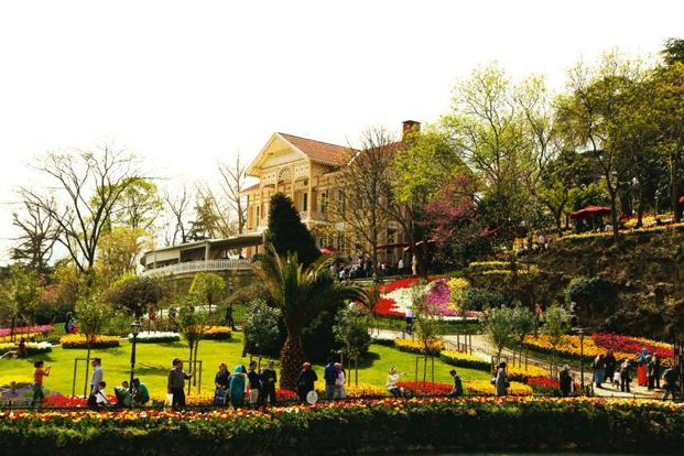 The best time to visit the city is during the annual tulip festival. Photo: iStockphoto