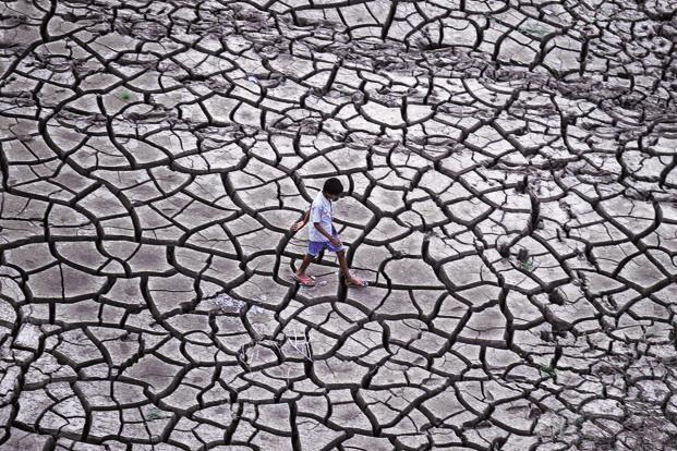 Apart from Telangana, eight other states, Karnataka, Odisha, Maharashtra, Madhya Pradesh, Chhattisgarh, Jharkhand, Uttar Pradesh and Andhra Pradesh, have declared a drought this year. Photo: AFP
