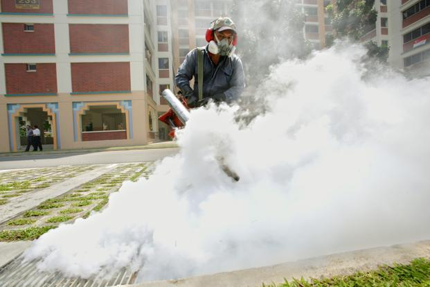 WHO Said Widespread Spraying To Eliminate Mosquitoes Has Failed To  Significantly Stop The Spread Of Dengue