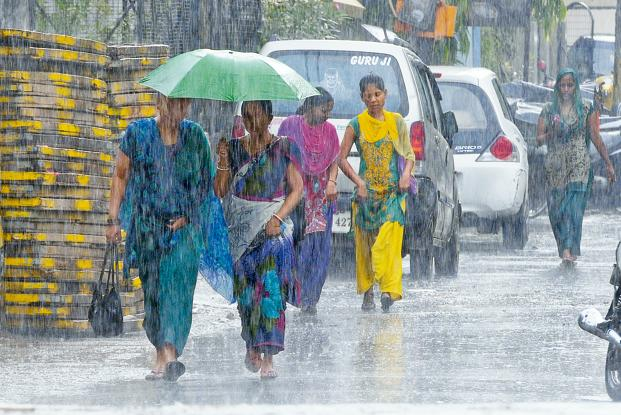 A good monsoon is crucial in a country where 44% of total food production is dependent on rain-fed farming and the June-September southwest monsoon brings 80% of annual rainfall. Photo: Hindustan Times