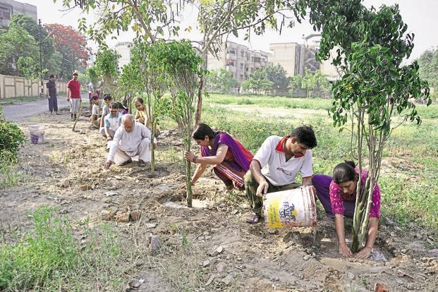The amendment facilitates the distribution of around `42,000 crore among all states to encourage them to plant forests. Photo: Hindustan Times (Hindustan Times)