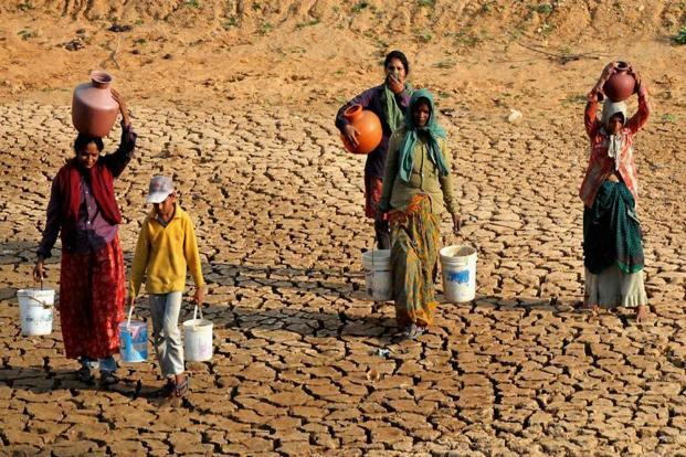 The drought that struck the state in 2015 came on the back of unseasonal rains damaging the winter harvest last year, and a monsoon deficit that led to a dip in kharif output in 2014. Photo: PTI