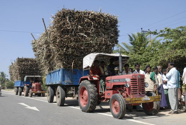 India is likely to become a net importer of the sweetener in the 2016-17 season, starting 1 October. Photo: Hemant Mishra/Mint