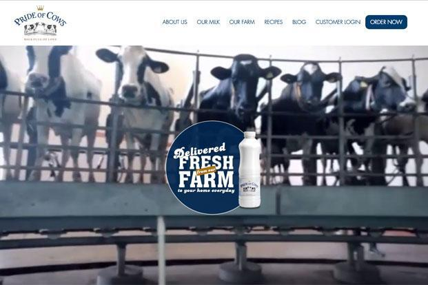 While Parag Milk Foods' Pride of Cows is a well marketed brand with a client base of celebrities, a few other companies have also been trying to sell high-quality milk in different parts of the country.