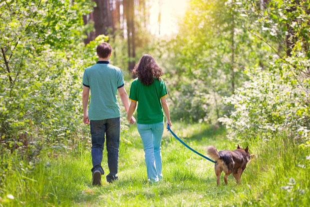 Spending time with nature can protect against diseases such as depression. Photo: iStockphoto