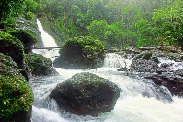 The Jogigundi Falls in Agumbe. Photo: Ganesh Vancheeswaran