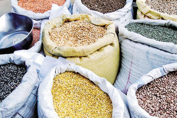 The price of pulses—such as green, black and red gram—hit record highs earlier this year after back-to-back droughts curbed output in 2015. But in the past few weeks, prices have softened with ample rains prompting farmers to cultivate more.  Photo: Pradeep Gaur/Mint