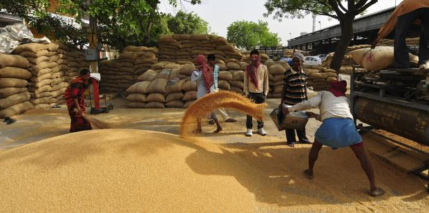 Govt lowered the wheat import tax to 10%  from 25%. Photo: Ramesh Pathania/Mint